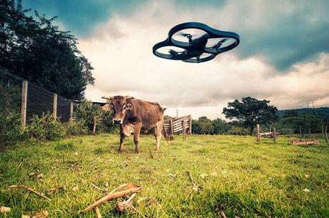 Pour une souveraineté technologique des paysans | Enseigner à produire autrement | Scoop.it