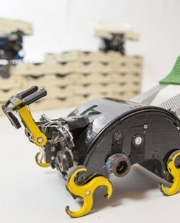 Robotic termites build without a boss | Interesting Engineering | Scoop.it