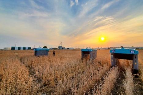Les robots agricoles de Google prêts à fondre sur les champs ...