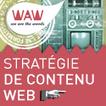 Ergonomie des contenus et rédaction Web, les revers d'une médaille | eformation | Scoop.it