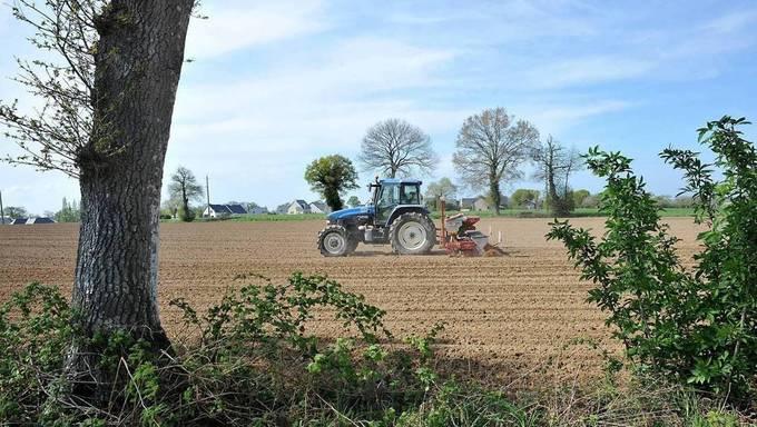Coronavirus. Les Français « qui n'ont plus d'activité » appelés à aider les agriculteurs