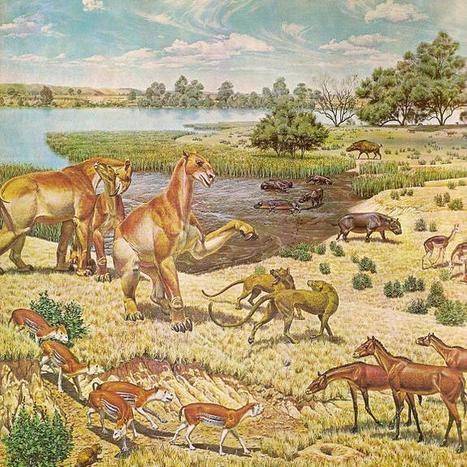 The Extinction Catalog /// 2014 | Twitter Bots | Scoop.it
