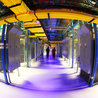 Big Data and Network Systems