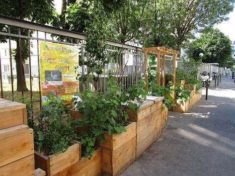 L'agriculture urbaine doit rester un bien commun, pas une activité commerciale | Ambiances, Architectures, Urbanités | Scoop.it