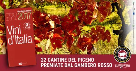 22 cantine del Piceno nella guida del Gambero Rosso | Le Marche un'altra Italia | Scoop.it