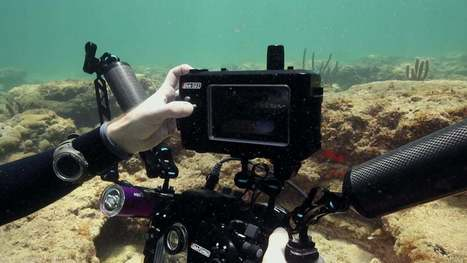 Nauticam NA-502 Underwater Housing for SmallHD 501 & 502 Monitors | Cinescopophilia | Scoop.it