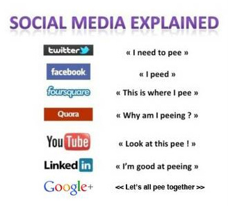 Social Media Statistics Plus Infographic | Jeffbullas's Blog | Social Media as Content & Audience Aggregator | Scoop.it