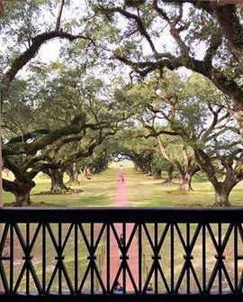Two Twenty One - We toured Oak Alley Plantation today. I'm... | Facebook | Oak Alley Plantation: Things to see! | Scoop.it
