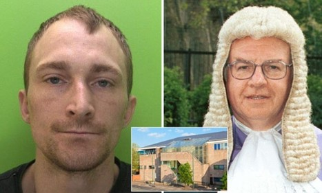 Lock burglars up for longer says top judge fed up with crooks repeatedly reoffending while on parole | News round the Globe especially unacceptable behaviour | Scoop.it
