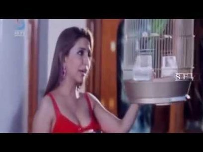 Wafa - A Deadly Love Story 720p download movie