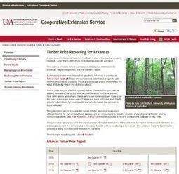 State website provides information on timber prices   Timberland Investment   Scoop.it