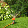 Choose Pink & Green (Lawn Care and Landscape) in Miramar, FL