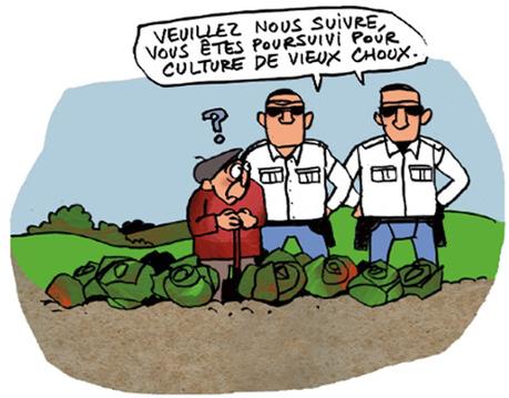 Légumes clandestins : halte à la répression des petits maraîchers | 694028 | Scoop.it