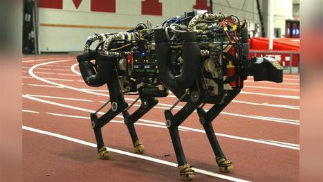 The 10 Scariest, Weirdest, Coolest Robots of 2015 | Communication design | Scoop.it