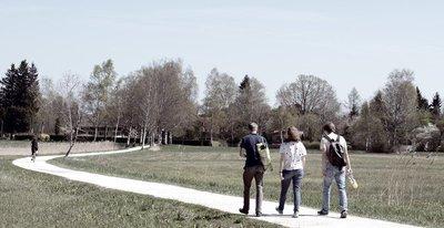 Jeunes pauvres : quelles mesures et définitions ? | INJEP