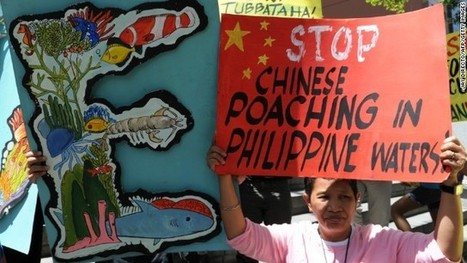 Philippines arrest Chinese 'poachers' after reef collision   Wildlife Trafficking: Who Does it? Allows it?   Scoop.it