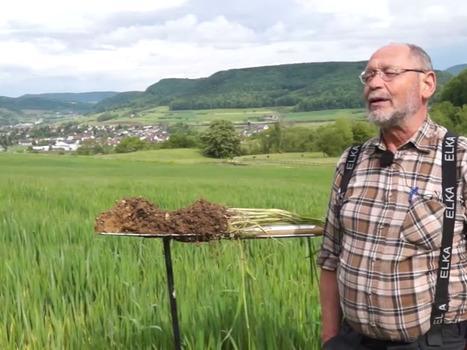 Gerhard Hasinger, un praticien qui utilise le test à la bêche depuis des dizaines d'année, pour observer les sols | SPATEN   Test Bêche | Scoop.it