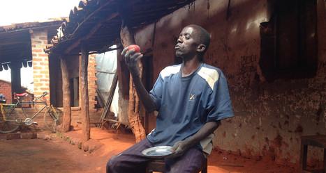 Burundi : Des agriculteurs découvrent une nouvelle technique de conservation des tomates | Actualités Afrique | Scoop.it