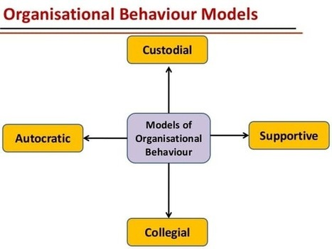 organizational behavior case studies robbins
