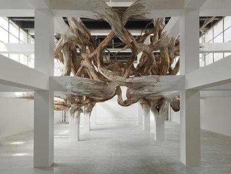 henrique oliveira: baitogogo at palais de tokyo, paris | Contemporary Art, Design and Technology | Scoop.it