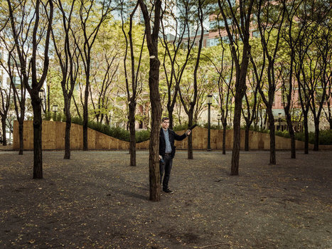 To Create a Quieter City, They're Recording the Sounds of New York   audio branding   Scoop.it