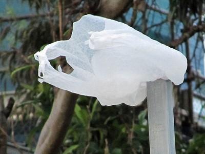 Los Angeles Becomes Largest U.S. City to Ban Plastic Bags | Préserver la planète | Scoop.it