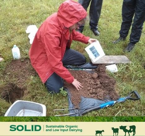 santé des sols et productivité des pâturages, Centre de recherche agriculture bio, Grande-Bretagne | SPATEN   Test Bêche | Scoop.it