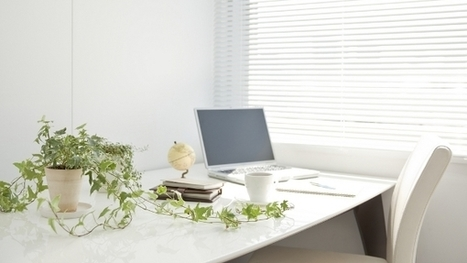 5 Reasons to Have a Plant at Your Desk | Office Environments Of The Future | Scoop.it
