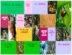 Documenta. Plataforma para crear, publicar y compartir proyectos multimedia | WEBOLUTION! | Scoop.it