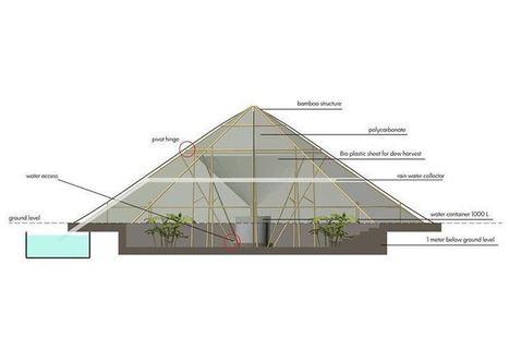 Roots Up. Invernadero colector de agua de rocío ofrece verduras y agua en Etiopía | Acción positiva: #Alternativas | Scoop.it
