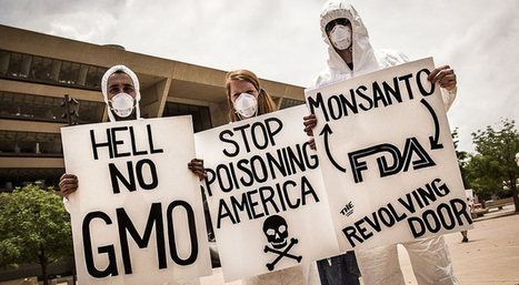 """53 Real Reasons We Cannot Support Monsanto & GMOs (""""the arguments go on and on; the enemy is unmasked"""") 