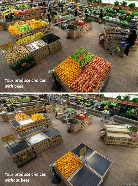 LOOK: This Is Your Supermarket Without Bees | Vertical Farm - Food Factory | Scoop.it