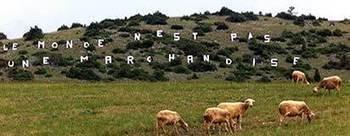 Communiqué de presse : OGM cachés tolérant aux herbicides : L'environnement et la souveraineté alimentaire sacrifiés | Confédération Paysanne | Abeilles, intoxications et informations | Scoop.it