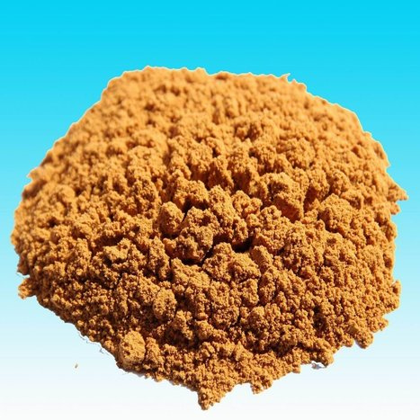 Ox Bile Powder Manufactures in India | Biologic