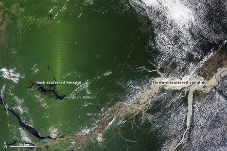 Seasonal Amazon Greening May Be a Satellite Effect : Image of the Day | Remote Sensing News | Scoop.it