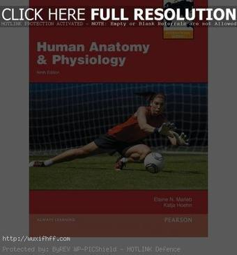 Human Anatomy And Physiology Marieb 9th Edition...