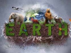Five gigantic things happening in sustainability   Geek out   Scoop.it