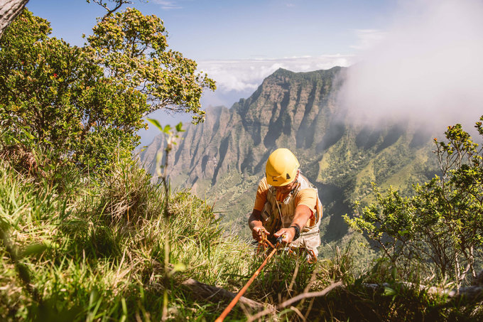 Extreme Botany: The Precarious Science of Endangered Rare Plants