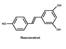 Controversial Anti-Aging Chemical Resveratrol Back In The Spotlight With New Details About How It Works | Longevity science | Scoop.it