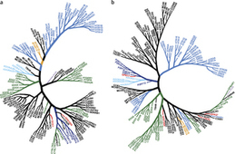 The ChEMBL-og - Open Data For Drug Discovery: Paper: A Ligand's-Eye View of Protein Similarity   Bioinformatics, Chemoinformatics, Biocomputing and Systems Biology   Scoop.it