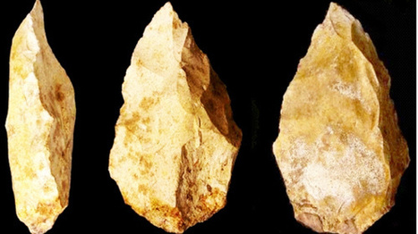 100,000-year-old human settlement in U.A.E. overturns what we know of our evolution | Past is prologue | Scoop.it