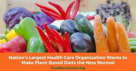 Nation's Largest Health Care Organization Wants to Make Plant-Based Diets the New Normal | Vegan going mainstream | Scoop.it