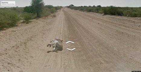 Google: We Didn't Run Over A Donkey In Botswana (PHOTOS) | Nerd Vittles Daily Dump | Scoop.it