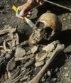 Ancient Swedish farmer came from the Mediterranean | World Neolithic | Scoop.it