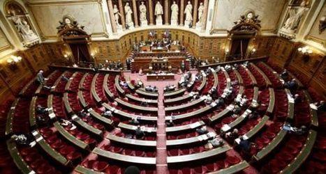 Le Sénat rejette la proposition de résolution européenne sur l'enseignement supérieur | Enseignement Supérieur et Recherche en France | Scoop.it