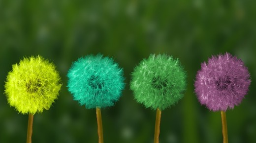 3 key strategies for becoming a diversity and inclusion leader