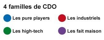 Chief digital officers : 40 champions de la transformation numérique   Strategies Digitales   Scoop.it