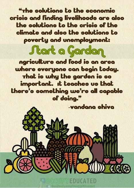 Start a garden | Arrival Cities | Scoop.it