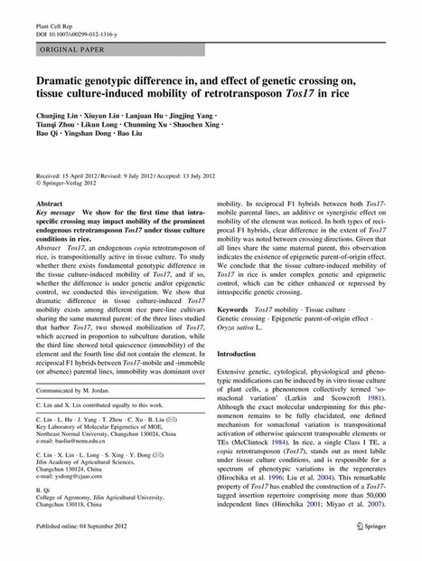 Dramatic genotypic difference in, and effect of genetic crossing on, tissue culture-induced mobility of retrotransposon Tos17 in rice - Springer | plant cell genetics | Scoop.it