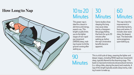 How Long To Nap For The Biggest Brain Benefits | News for IELTS + Class Discussion | Scoop.it